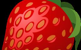sajenje jagod